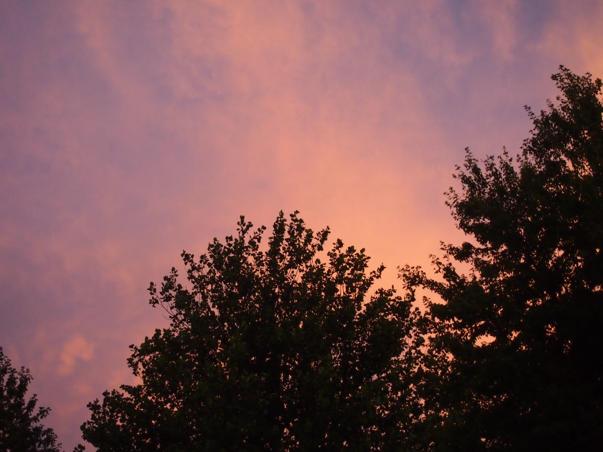 A Fall Sky